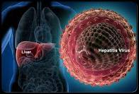 Pengertian Hepatitis Dan Jenis hepatitis